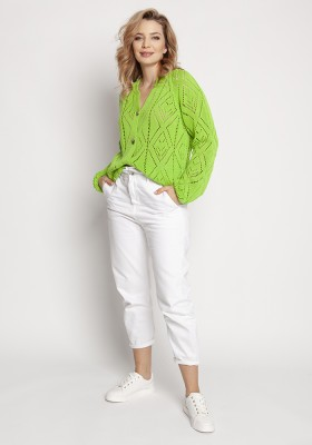swe233 light green