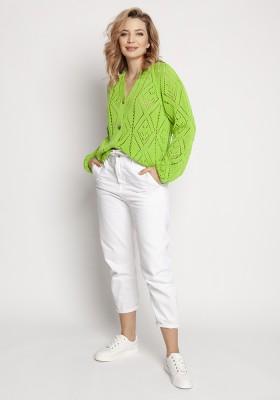 swe233 jasny zielony